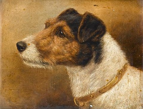 fox terriers pair by edward aistrop