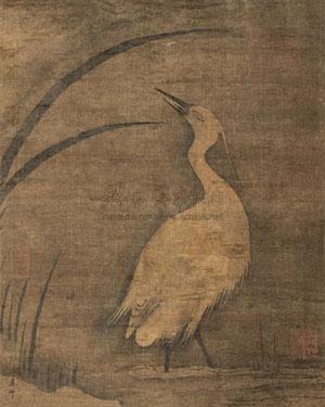 水仙白鹭 by ma lin