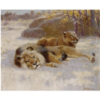 lions resting by john charles dollman