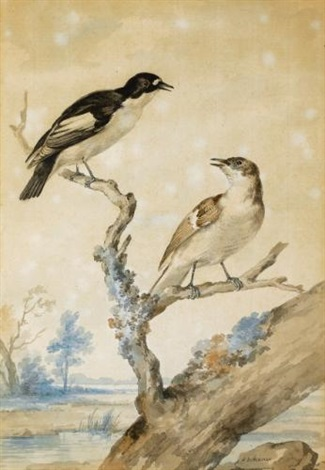 a pair of pied flycatchers (+ a pair of goosander, lrgr; 2 works) by aert schouman