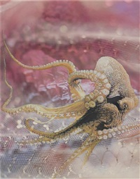 untitled (octopus) by jim shaw