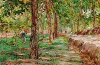 gathering wood by fulvio tessitore