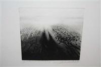 marks from a landscape ii by linda ruttleynck