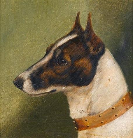 head of a fox terrier by edward aistrop