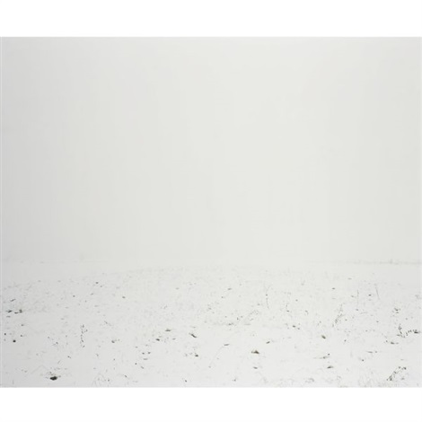white scape 2 by ori gersht