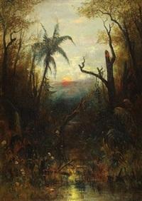 paysage tropical d amérique du sud by paul weber