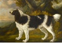 spaniel in a landscape by george garrard