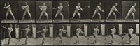 nude baseball player, plate 279 by eadweard muybridge