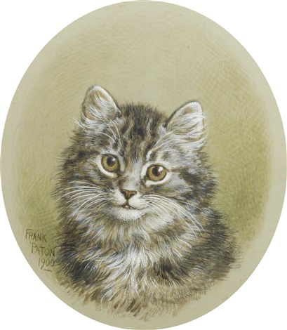 a kitten and a terrier pair by frank paton