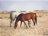 arabians by peter j. bailey