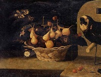 still life of cherries, plums and figs in a basket resting on a ledge, a parrot looking on by baltazar gomes figueira