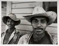 sugar cane farmers by david stephenson