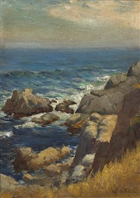 sea, rock, land and sky by william adam