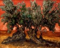 olivo by francisco ariza