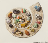 stones on a spiralling plank by jim leon