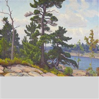 pine trees on the shoreline by frederick stanley haines