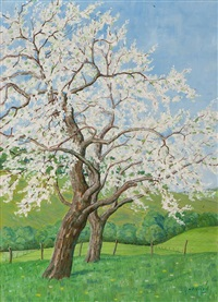 spring blossom by johannes lodeizen