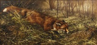 fox chasing down a rabbit by mick cawston