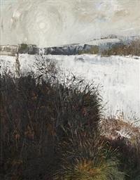winter near fyvie by ian fleming