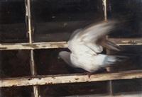 landing by yigal ozeri