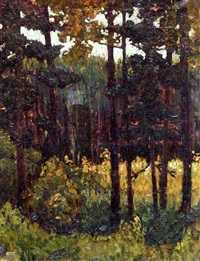 afterglow, wychwood by mary augusta hiester reid