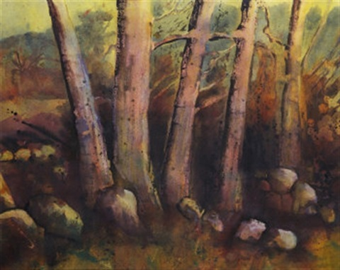 fairy pines by mairead holohan