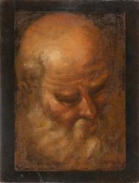 kopf eines alten mannes (volto di vecchio) by domenico beccafumi