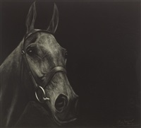 arkle by paddy lennon