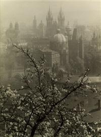 view of prague from the seminarska garden by josef sudek
