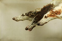 borzoi heads by maud earl