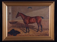 pincher - horse in stable by collender goldsmith