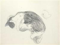 katzen (portfolio of 10) by joachim ragoczy