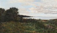 coastal scene on a cloudy summer day at aarhus by janus andreas barthotin la cour