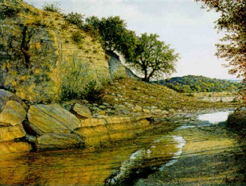 texas stream by nanette davis