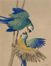 parrots by julius moessel