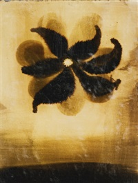 untitled by ross bleckner