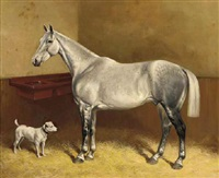 a dappled grey and a terrier in a stable by frank babbage