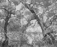 gloucester through trees by eunice fais jackson