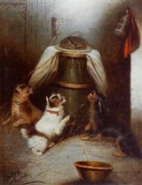 chiens et souris by c. armfield