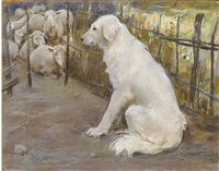 cane bianco by umberto coromaldi