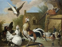 a cockerel, hens, a pheasant, ducks and other birds in a landscape by pieter casteels iii