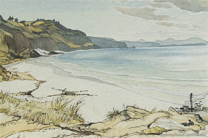 catlins coast by harry vye miller