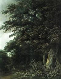 ein reiter im walde by guillam dubois