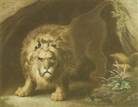 a lion by john graham