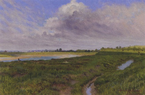 across the marshes by w savage cooper