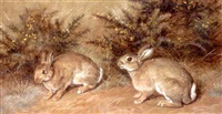 two rabbits by frank paton