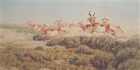 antelope by dan metz