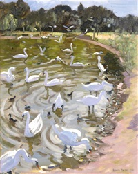 swans on a lake by andrew macara