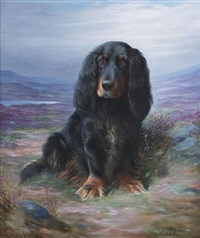 cocker spaniel in a highland landscape by lilian cheviot