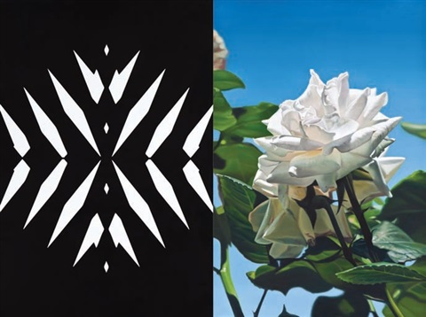 abstract rose 15 diptych by mustafa hulusi